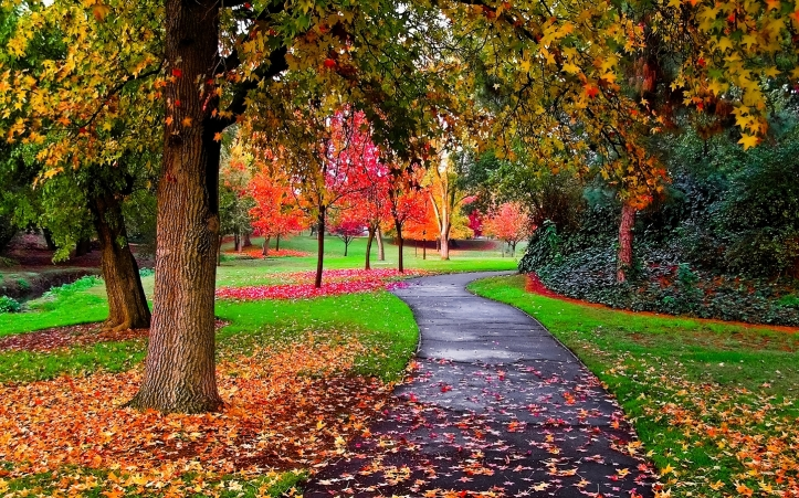 Autumn-in-the-Park